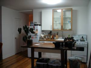 My Brooklyn Kitchen
